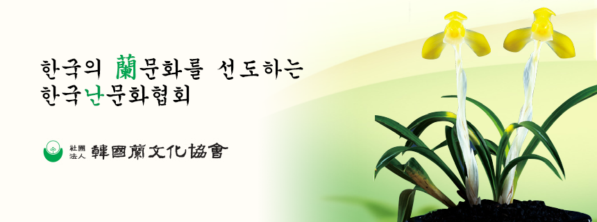 한국의 蘭문화를 선도하는 한국난문화협회